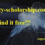 scholarships for philosophy students