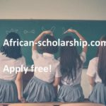 Danish scholarships for language study