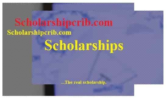 phd dissertation scholarships Phd candidates are eligible for dissertation research funding from several scholarship and grant programs put forth by the wenner-gren foundation for anthropological research the foundation supports innovative research that employs an international approach to worldwide anthropological understanding.